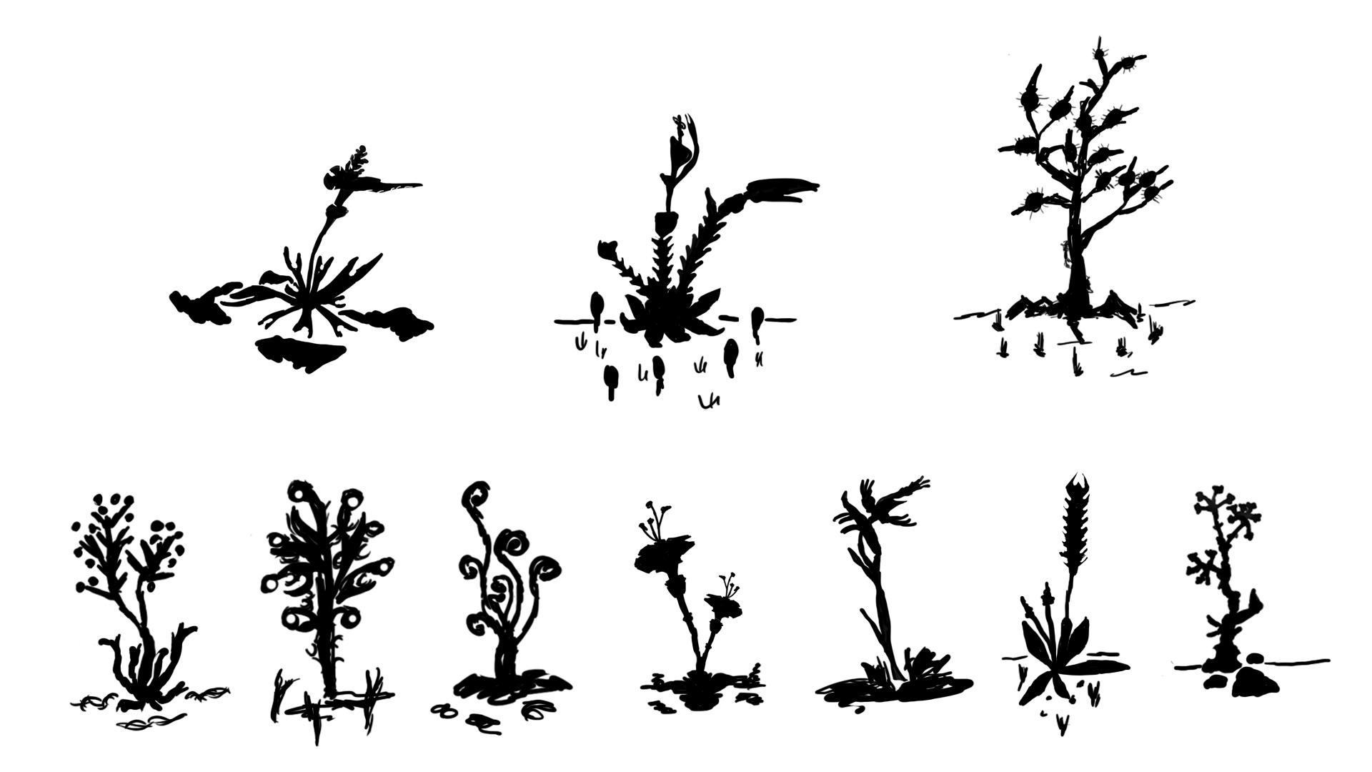Pflanzen-Konzepte_1